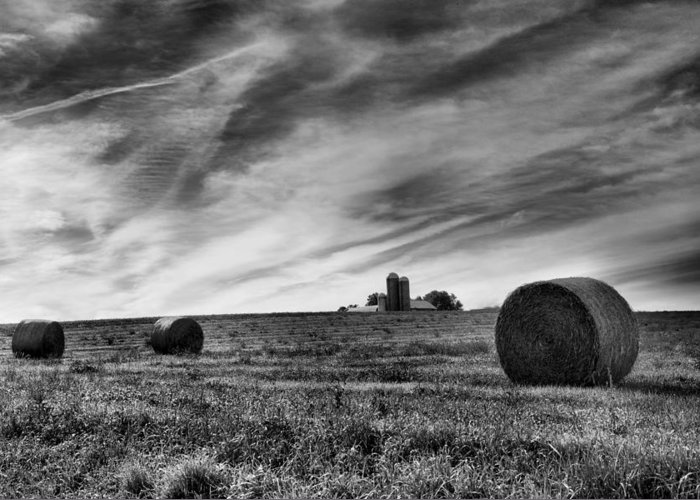 Hay Greeting Card featuring the photograph Hayrolls And Field by Steven Ainsworth