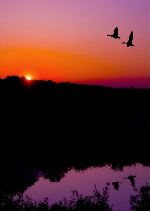 Sunset Greeting Card featuring the photograph Heading Home by Kenneth Krolikowski