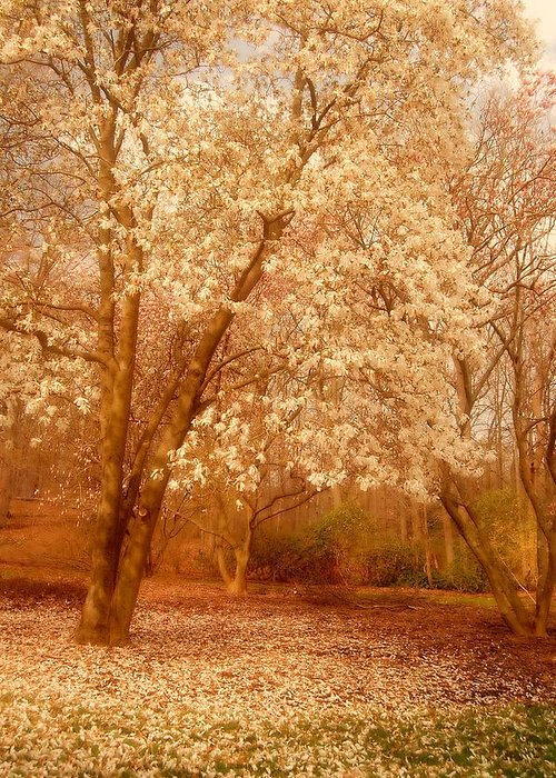 Dream Greeting Card featuring the photograph Hear The Silence - Holmdel Park by Angie Tirado