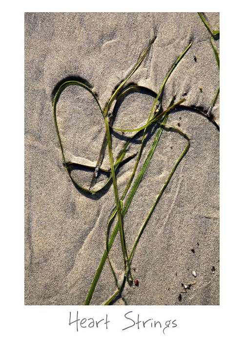 Beach Art Greeting Card featuring the photograph Heart Strings by Peter Tellone