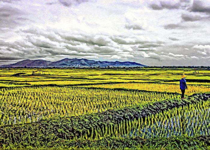 Rice Greeting Card featuring the photograph Heartland Oil by Steve Harrington