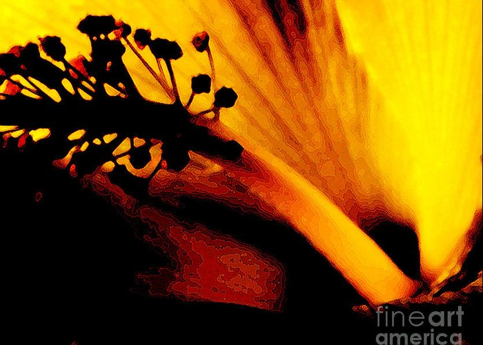 Flower Greeting Card featuring the photograph Heat by Linda Shafer