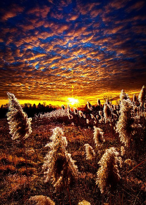Horizons Greeting Card featuring the photograph Heaven And Earth by Phil Koch