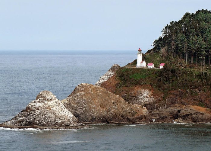 Hecata Head Lighthouse Greeting Card featuring the photograph Heceta Head Lighthouse - Oregon's Scenic Pacific Coast Viewpoint by Christine Till