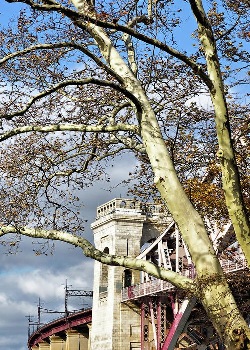 Bare Greeting Card featuring the photograph Hell Gate Through The Bows by Cate Franklyn