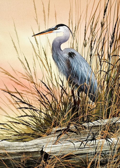Heron Greeting Card featuring the painting Heron Sunset by James Williamson