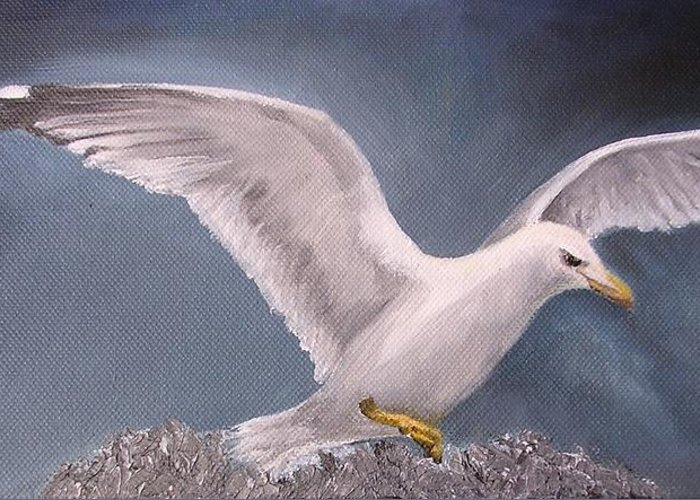 Seagull Greeting Card featuring the painting Herring Gull by Barbara Harper