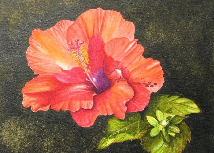 Flower Greeting Card featuring the painting Hibiscus Dance In The Sun by Elizabeth H Tudor
