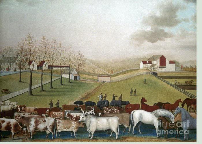 19th Century Greeting Card featuring the photograph Hicks: Cornell Farm, 1848 by Granger