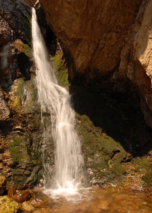 Waterfall Greeting Card featuring the photograph Hidden Falls by Dennis Hammer