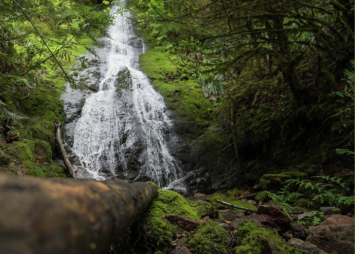 Greeting Card featuring the photograph Hidden Falls by Jade Woods