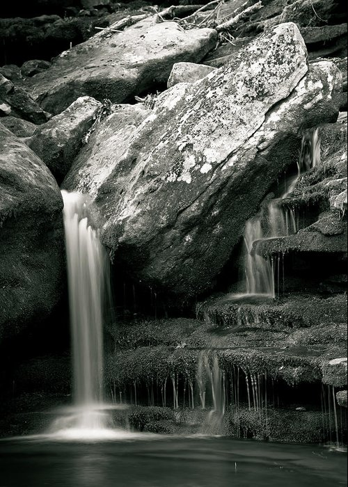 Waterfalls Greeting Card featuring the photograph Hidden In The Forest by Iris Greenwell