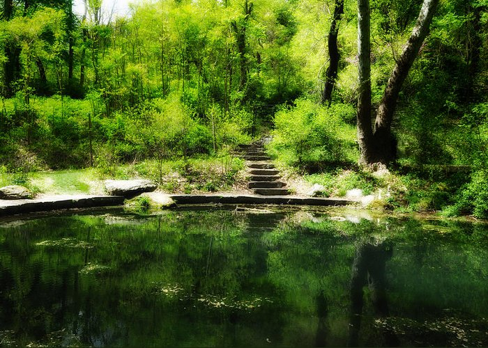 Pond Greeting Card featuring the photograph Hidden Pond At Schuylkill Valley Nature Center by Bill Cannon