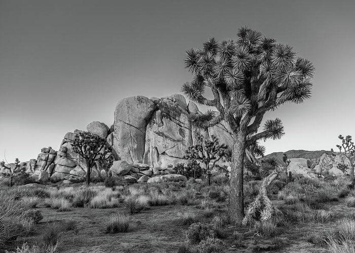 California Greeting Card featuring the photograph Hidden Valley Rock by Peter Tellone