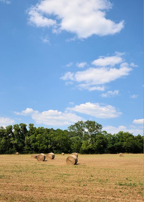 Landscapes Greeting Card featuring the photograph High As The Sky by Jan Amiss Photography