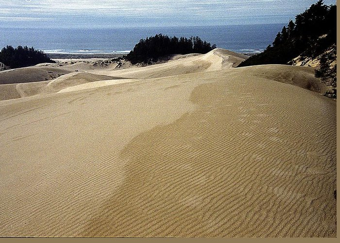 Oregon Dunes National Recreation Area Greeting Card featuring the photograph High Dunes 2 by Eike Kistenmacher
