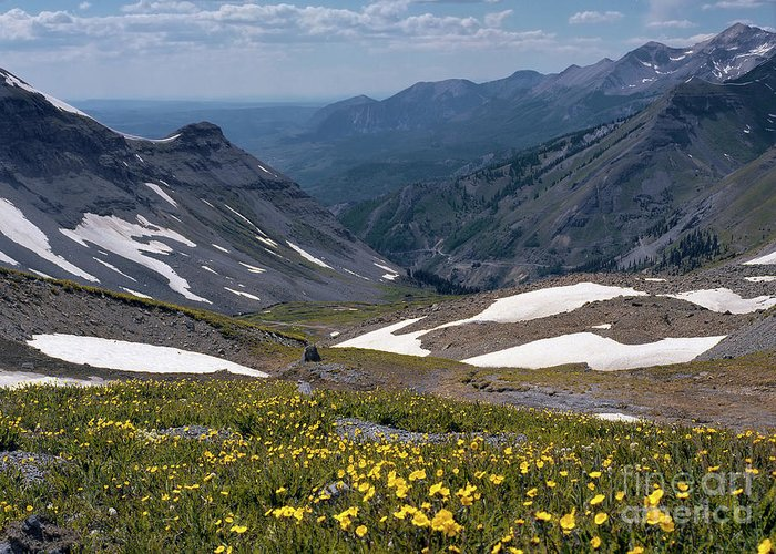 Alpine Greeting Card featuring the photograph High Mountain Vista by Crystal Garner