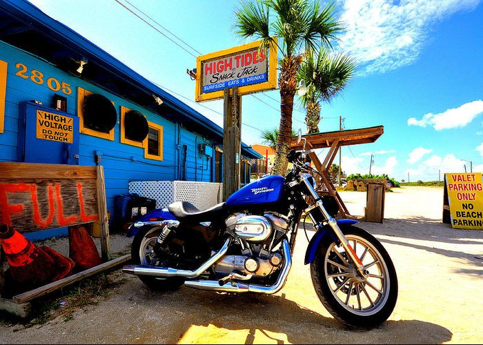 Flagler Beach Greeting Card featuring the photograph High Tides Harley by Andrew Armstrong - Mad Lab Images