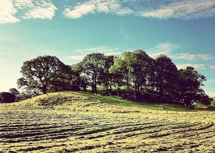 Beautiful Greeting Card featuring the photograph #hills #trees #landscape #beautiful by Samuel Gunnell