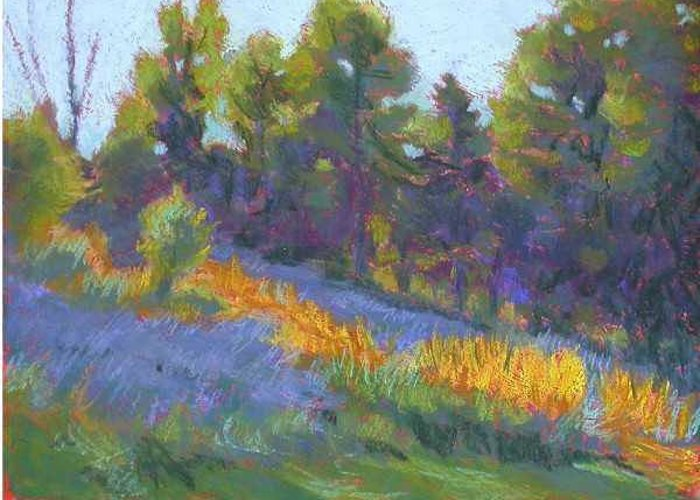 View Of Hillside And Evening Shadows Greeting Card featuring the painting Hillside Shadows by Julie Mayser