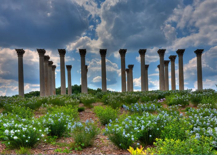 Nature Greeting Card featuring the photograph Hilltop Pillars by Kevin Hill