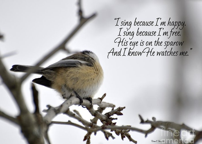 Diane Berry Greeting Card featuring the photograph His Eye Is On The Sparrow by Diane E Berry
