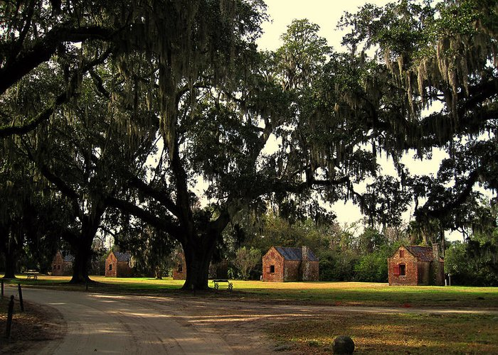 American History Greeting Card featuring the photograph Historic Slave Houses At Boone Hall Plantation In Sc by Susanne Van Hulst