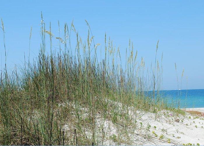 Beach Greeting Card featuring the photograph Holmes Beach Florida by Lisa Gabrius
