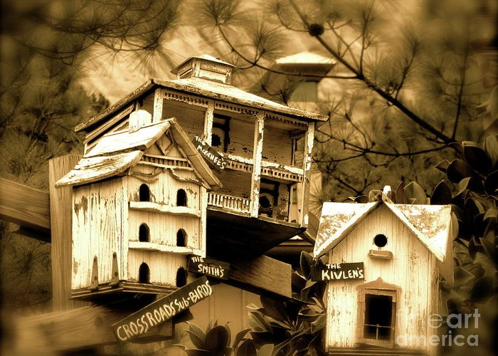 Birdhouse Greeting Card featuring the photograph Home by Barbara Palmer