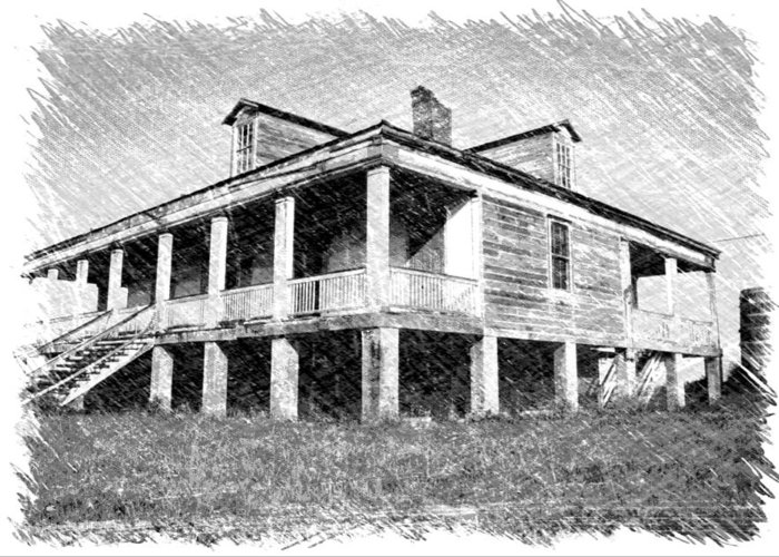 Louisiana Greeting Card featuring the photograph Homestead 1 by Dick Goodman