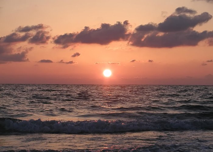 Honeymoon Island Greeting Card featuring the photograph Honey Moon Island Sunset by Bill Cannon