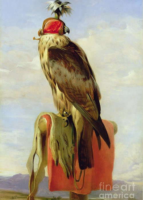 Perch; Roost; Feathered; Hood; Portrait; Bird Of Prey; Bell Greeting Card featuring the painting Hooded Falcon by Sir Edwin Landseer