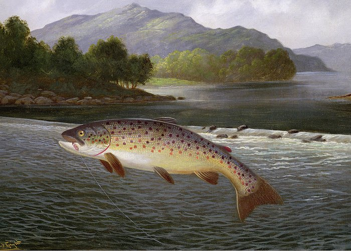 Leaping Trout Greeting Cards