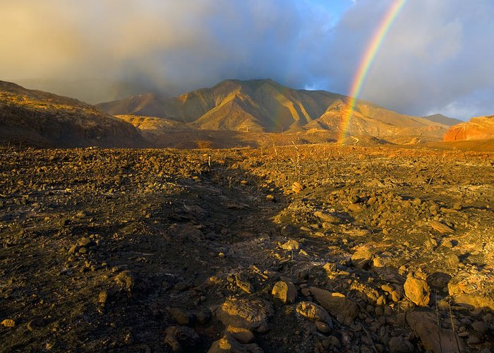 Rainbow Greeting Card featuring the photograph Hope From Desolation by Mike Dawson
