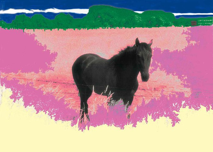 Horse Greeting Card featuring the photograph Horse In A Dreamfield 7 by Lyle Crump