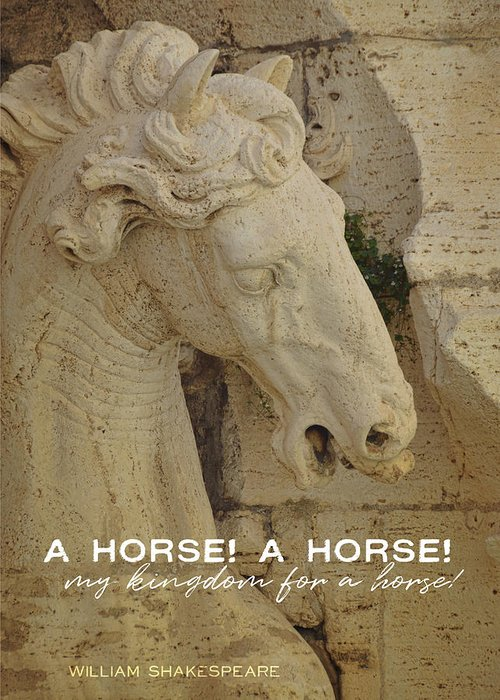 Equine Greeting Card featuring the photograph Horse In The Fountain Quote by JAMART Photography