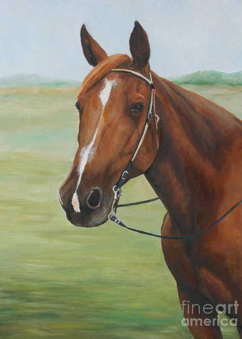 Pet Greeting Card featuring the painting Horse Portrait by Charlotte Yealey