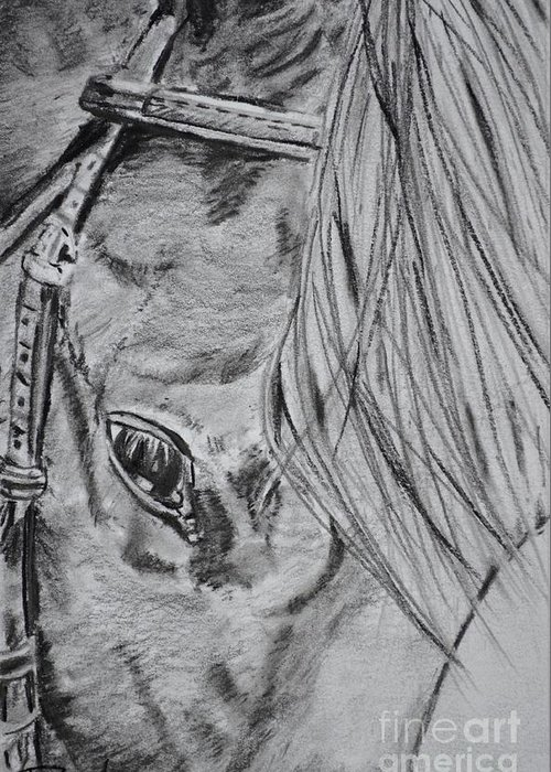 Horse Head Greeting Card featuring the drawing Horse by Regan J Smith