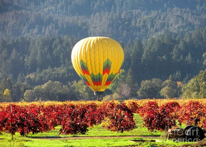 Hot Air Balloon Greeting Card featuring the photograph Hot Air In The Valley by Gail Salituri