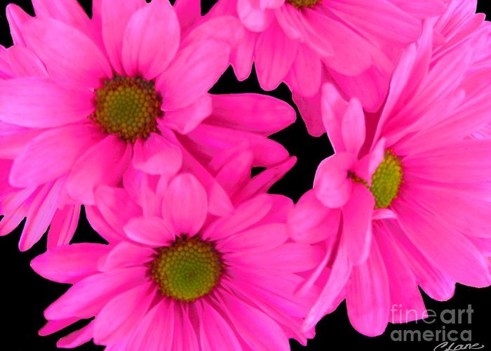 Hot pink flowers greeting card for sale by cindi lane flower prints greeting card featuring the digital art hot pink flowers by cindi lane mightylinksfo Choice Image