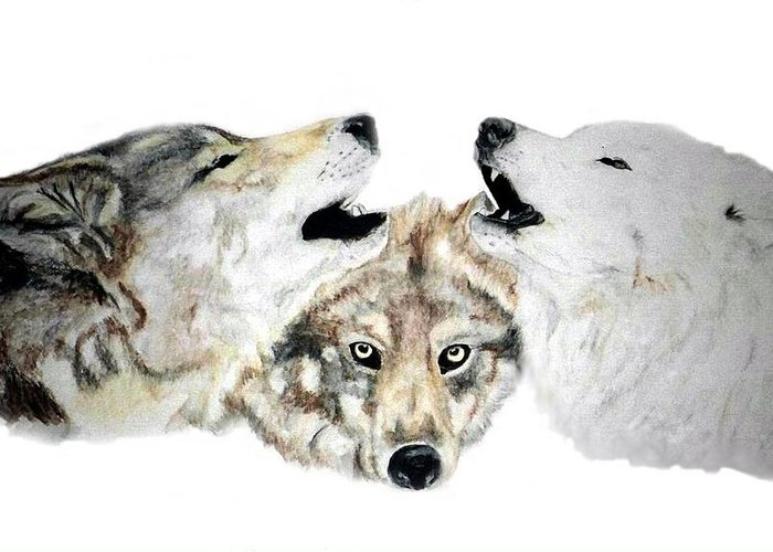 Wolves Greeting Card featuring the painting Howling by Debra Sandstrom