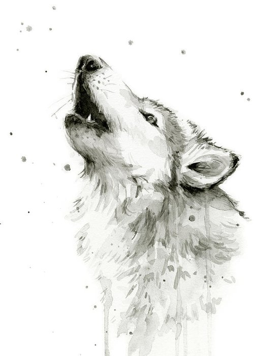 Watercolor Greeting Card featuring the painting Howling Wolf Watercolor by Olga Shvartsur