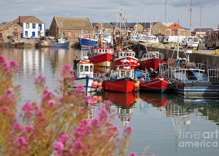 Harbor Greeting Card featuring the photograph Howth Harbour by Gabriela Insuratelu