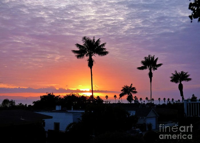 Photograph Greeting Card featuring the photograph Hued Sunset by Julieanne Case