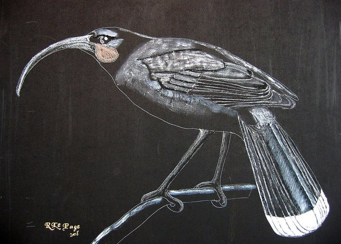 Huia Greeting Card featuring the painting Huia by Richard Le Page