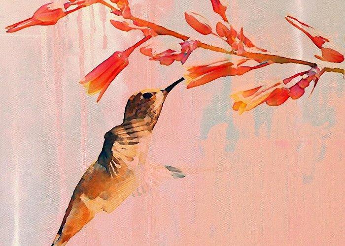 Hummingbird Greeting Cards
