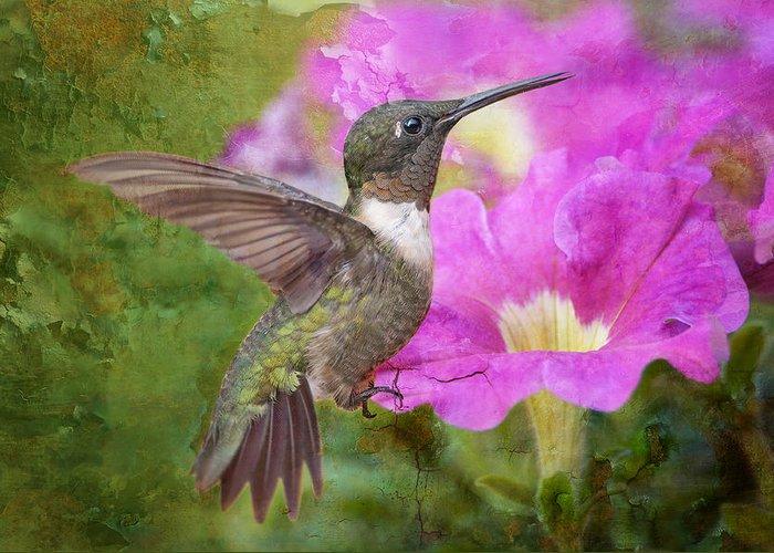 Migrating Hummingbird Greeting Cards