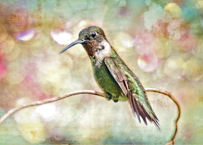 Hummingbird Greeting Card featuring the photograph Hummingbird Art by Bonnie Barry