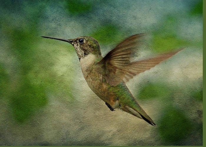 Hummingbird Greeting Card featuring the photograph Hummingbird In Flight II by Sandy Keeton