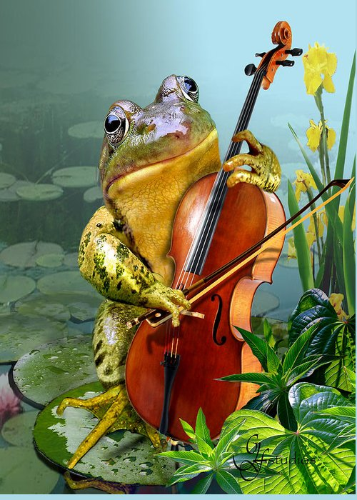 Humorous Frog Playing Cello Greeting Cards
